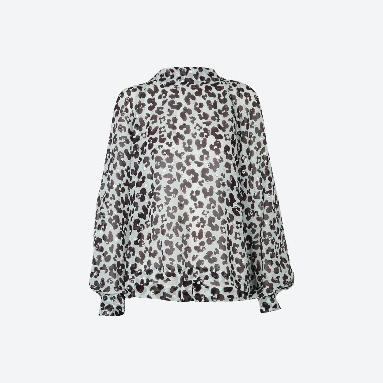 delicate-dazzle-blouse
